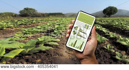 Agriculture Technology Concept Man Agronomist Using A Tablet Internet Of Things Report.