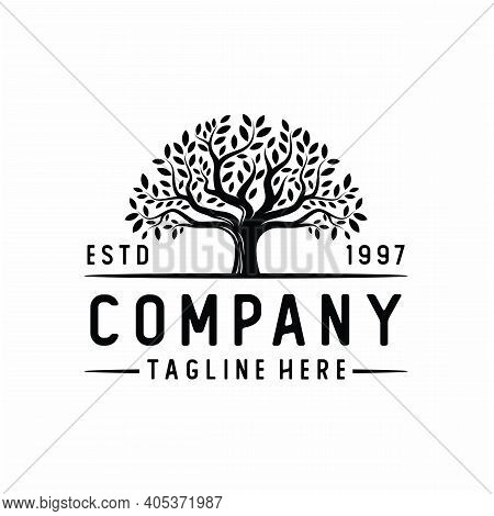 Vibrant Tree Logo Design, Tree And Root Vector. Tree Of Life Logo Design Inspiration