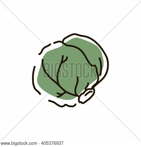 Brussels Sprouts Outline On A White Background. Icon. Vector Illustration.