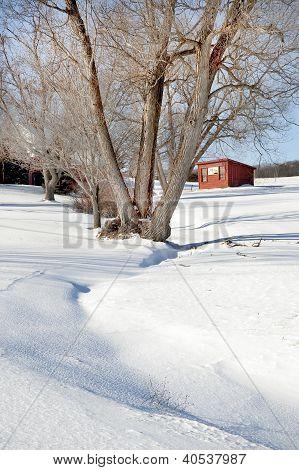 Brooder house in a snowy rural scene