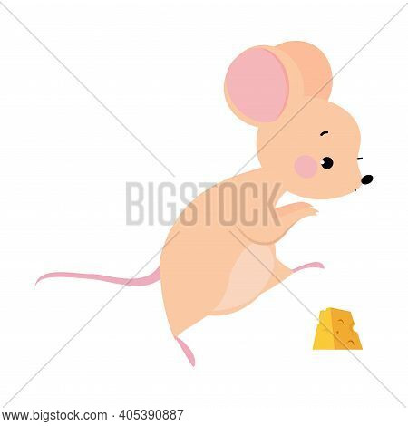 Cute Mouse With Pointed Snout And Rounded Ears Tiptoeing Towards Cheese Slab Vector Illustration