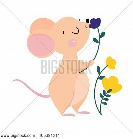 Cute Mouse With Pointed Snout And Rounded Ears Smelling Flower Vector Illustration