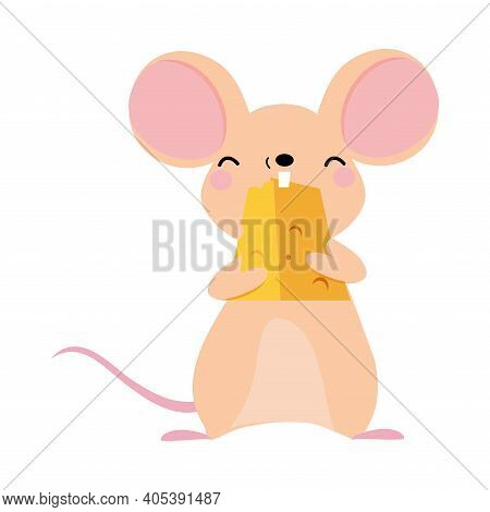 Funny Mouse With Pointed Snout And Rounded Ears Nibbling Cheese Slab Vector Illustration