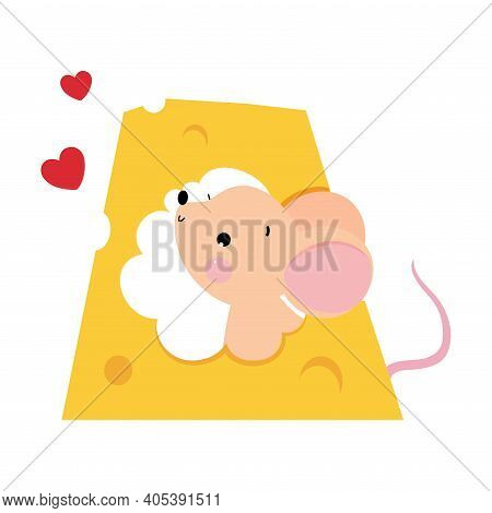 Funny Mouse With Pointed Snout And Rounded Ears Looking Out Cheese Hole Vector Illustration