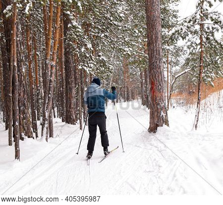 A Man Is Skiing In A Winter Park. Winter Sport. Ski Track In The Forest. Active People In Nature. Se