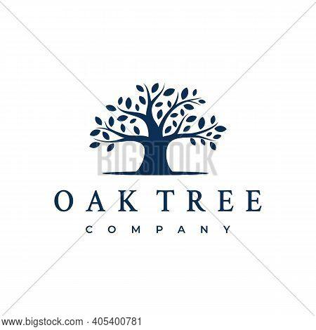 Oak Banyan Tree Logo Design. Tree Of Life Logo Design Inspiration