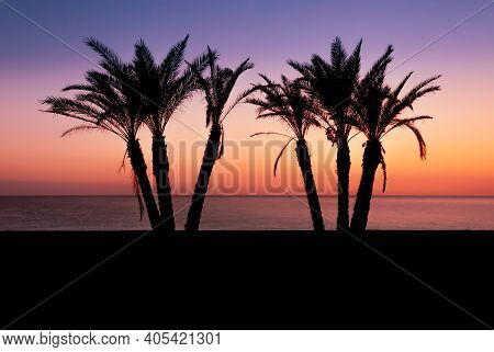 Silhouette Palm Trees With The Mediterranean Sea Horizon As The Sun Sets On The Beach At La Herradur