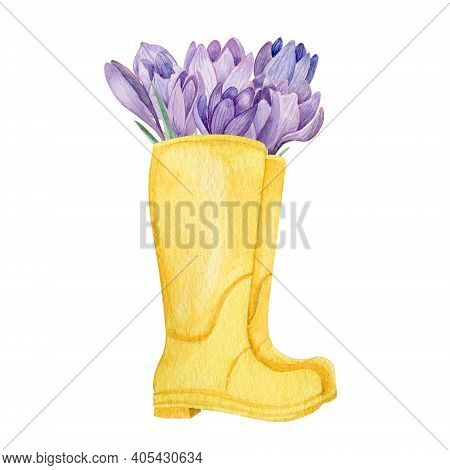 Yellow Boots With Purple Crocuses Watercolor Illustration. Spring Garden Composition Of Boots And Fl