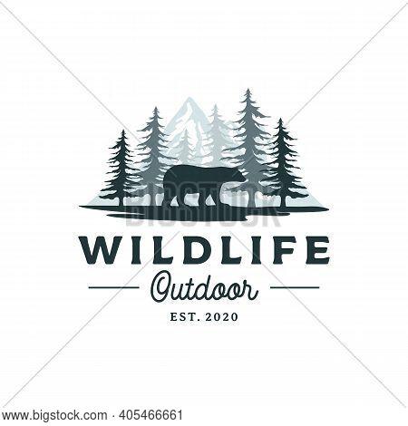 Bear, Mountain And Pine Cedar Conifer Wilderness Adventure Logo Design
