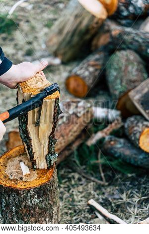 Cutting Alder Log For Firewood - Isolated Action With Copy Space