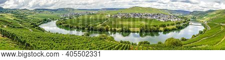 Panorma From Beautiful Moselle Valley With View To Trittenheim In Germany