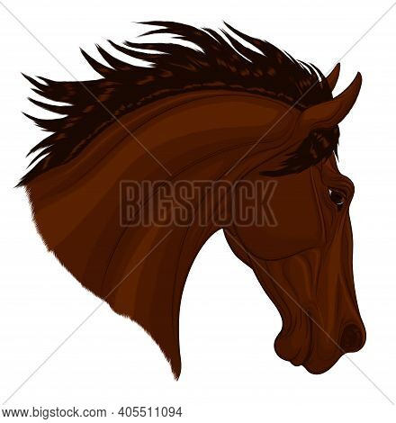 Portrait Of A Dark Brown Stallion Arched Its Neck During A Jump. Head Of A Leaping Horse Pricked Up