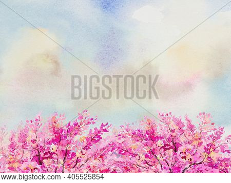 Abstract Background, Pink Flowers. Watercolor Painting Illustration Colorful Natural Of Wild Himalay
