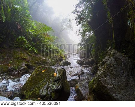 Misty Mountain River In Green Jungle Forest. Tropical Nature Photo. Mountain River In Jungle Forest.
