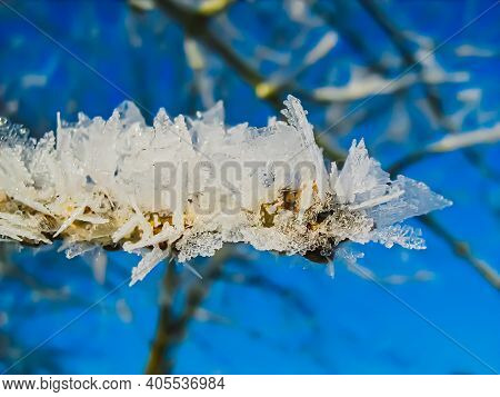 Frost-covered Frozen Tree Branches Against A Blue Winter Sky.