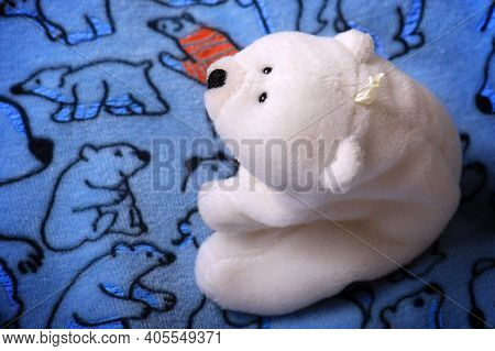 A White Stuffed Polar Bear On Blue Fabric With Another Polar Bear With Same Expression.