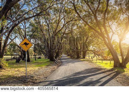 Kangaroo Warning Next To The Road Road At Onkaparinga River National Park On A Day, South Australia