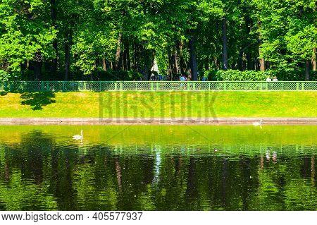 Saint Petersburg, Russia - June 6, 2019. Summer Landscape, Karpiev Pond In The Summer Garden. Summer