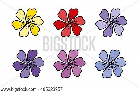 Vector Multicolored Wild Flowers Cornflower In Doodle Style. Design For Postcards, Web Banners, Birt