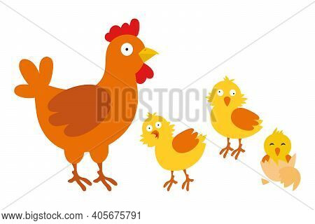Mother Hen With Chicks. Hen And Chickens. Vector Illustration Isolated On White Background