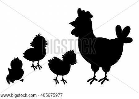 Hen And Chickens, Black Silhouette. Vector Illustration Isolated On White Background.