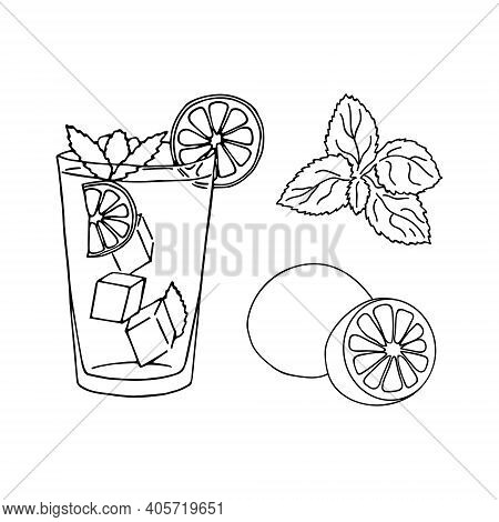 Glass Of Mojito, Ice Cubes, Mint Leaves, Lime Slice And Whole Lime. Hand Drawing Alcohol Cocktail. V