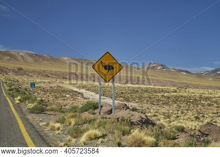 Black And Yellow Road Sign Standing Next To The Street In Chile At The Panamerican Highway, Warning