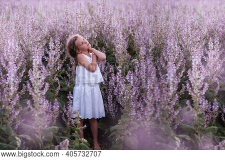 Close-up Portraits Of A Little Girl With Long Flowing Hair In Blooming Pink Sage Field. Dreamer Blon