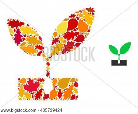 Plant Sprout Mosaic Icon Created For Fall Season. Vector Plant Sprout Mosaic Is Formed Of Random Fal