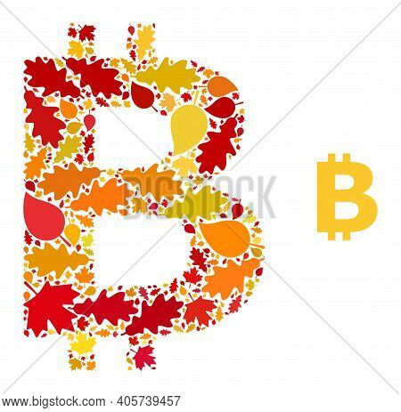 Bitcoin Symbol Mosaic Icon Combined For Fall Season. Vector Bitcoin Symbol Mosaic Is Formed Of Scatt
