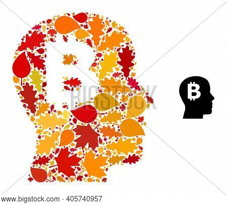 Bitcoin Imagination Mosaic Icon Designed For Fall Season. Vector Bitcoin Imagination Mosaic Is Done
