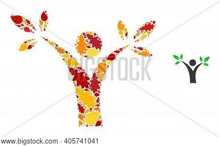Tree Man Mosaic Icon Created For Fall Season. Vector Tree Man Mosaic Is Created Of Random Fall Maple