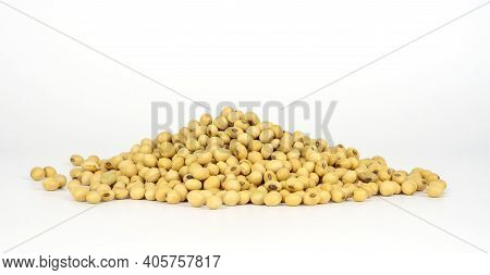A Pile Of Soy Bean On White Background