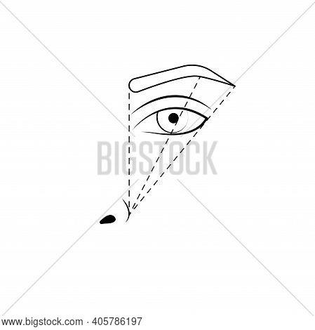 Eyebrow Tattoo, Marking Scheme. Eyebrow Correction, Microblading