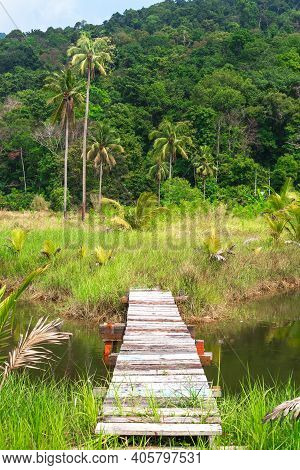 Beautiful Landscape. Wooden Footbridge Over A Lake In A Tropical Forest. Travel And Tourism.