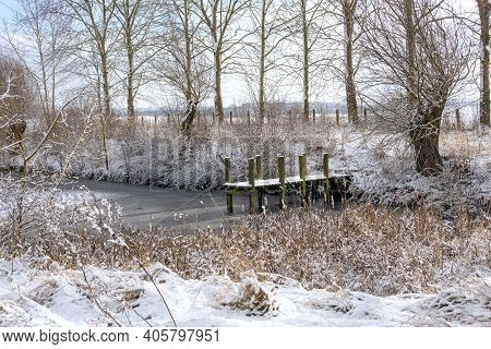 Wooden Footbridge Or Jetty Covered With Snow On The Shore Of A Lake With Reeds, Bushes And Bare Tree