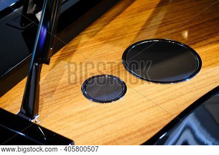 Electronic Grand Piano Speakers, Hybrid Synthesizer Speakers. Open Hybrid Piano Cover
