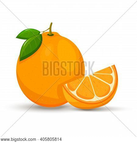 Orange Whole And Slices Of Oranges. Vector Illustration Of Oranges. Flat Design