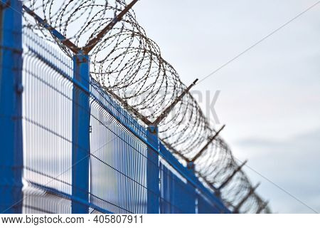 Barbed Wire On Blue Fence Of Restricted Area. No Unauthorized Entry. New Fence Of Military Border Te