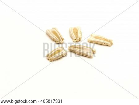 Five Opo Gourd Or Calabash Squash Seeds Isolated On White Background