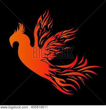 Phoenix Mascot Logo With Black Background. Flying Phoenix Fire Bird Abstract Logo Design Vector Temp