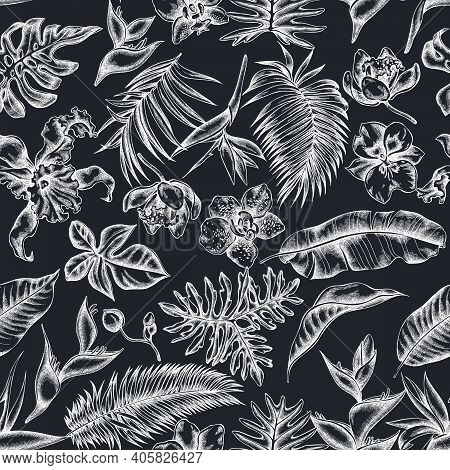 Seamless Pattern With Hand Drawn Chalk Monstera, Banana Palm Leaves, Strelitzia, Heliconia, Tropical