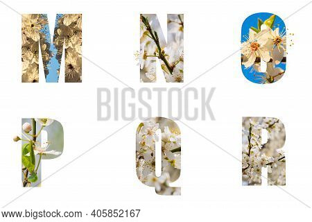 Floral Letters. The Letters M N O P Q R Are Made From Flower Photos. A Collection Of Wonderful Flora