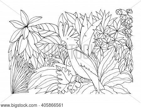 Coloring Book With A Parrot In The Rainforest. Vector Illustration. A Bird In The Jungle. Suitable F