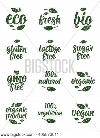 Gluten, Lactose, Sugar, Gmo Free Lettering. Sign 100 Organic Food