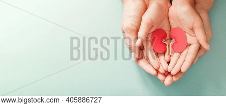 Adult And Child Holding Kidney Shaped Paper, World Kidney Day, National Organ Donor Day, Charity Don