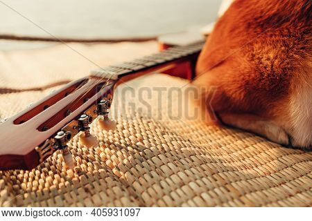 Guitar Beside A Dog On Reed Mat Near The Sea At Sunset. Travel, Vocation, Holiday, Summer Concept.