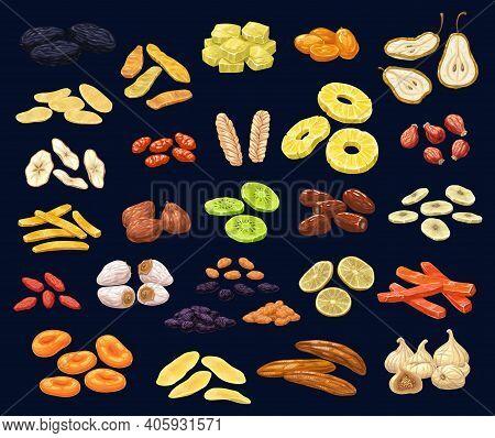 Dried Fruits And Berries Dessert Set. Prune, Mango And Ginger, Kumquat, Pear And Apple, Dogwood, Mel