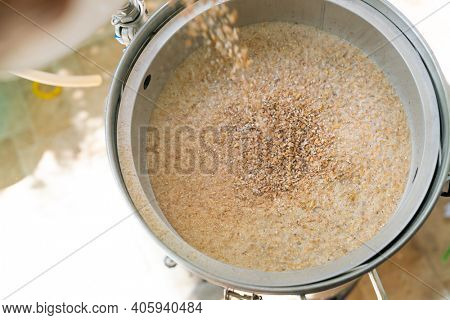 The process of home brewing beer using malt. Craft beer brewing from grain barley pale malt in process.