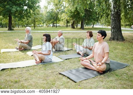 Group of mature people sitting on exercise mats in lotus position and meditating outdoors